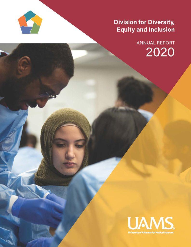 2020 DDEI Annual Report front cover